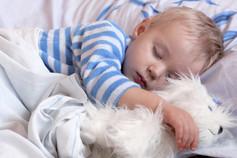 eMinder Schalfen - Lindert Schlafprobleme